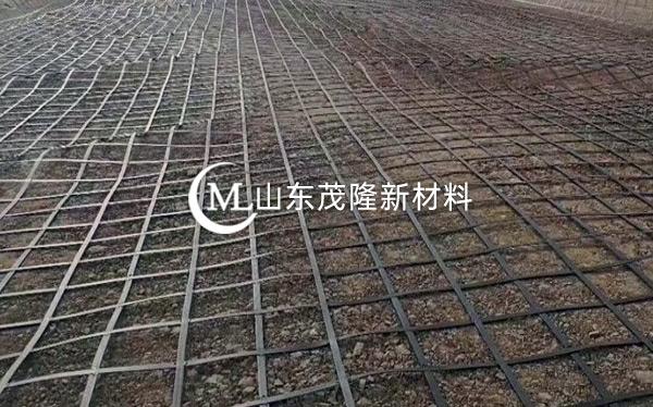 双向拉伸塑料土工格栅产品演示图1