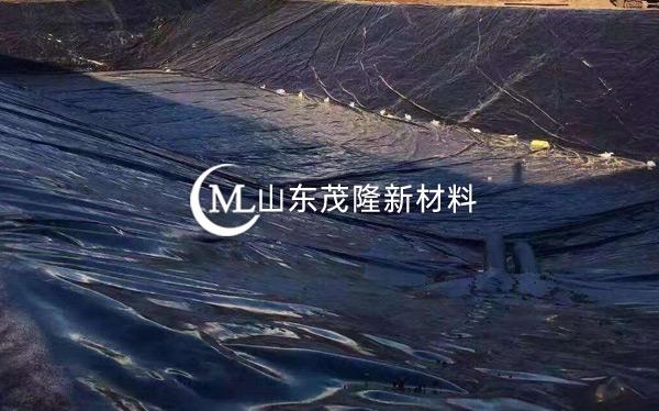 《长春经开区南区项目》HDPE防渗膜施工