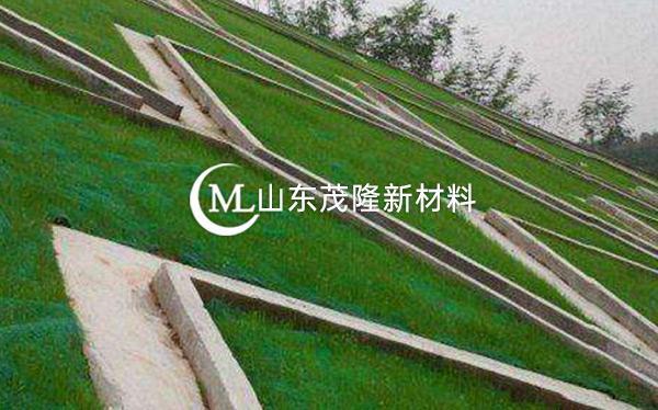 《都匀至安顺公路项目》土工格栅、三维植被网施工