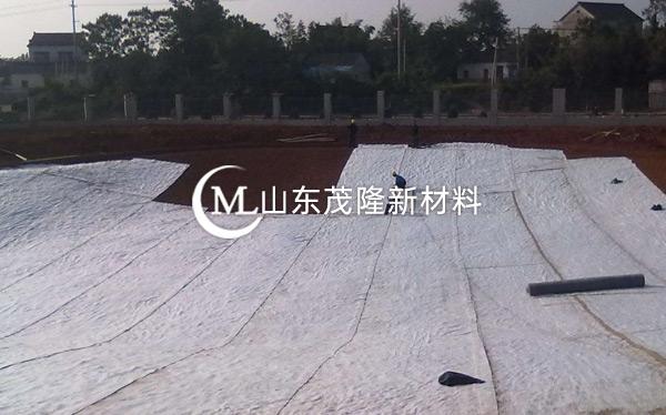 《郁南县都城环卫所》防水毯施工