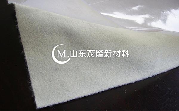 复合土工膜产品演示图1