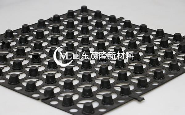 黑色蓄排水板