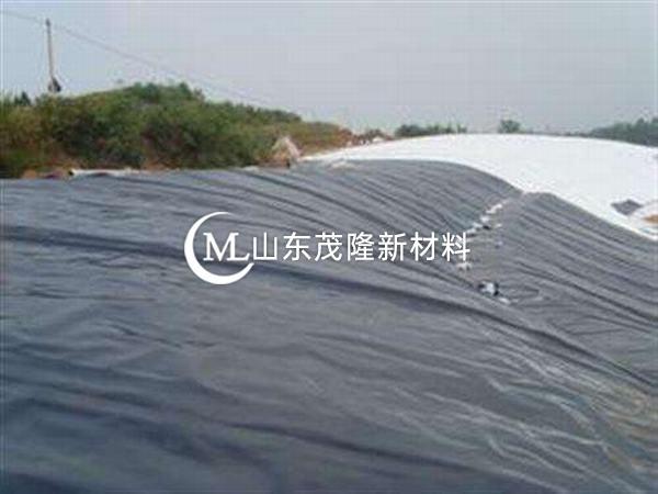 水下、土中的土工膜耐久性能特别突出