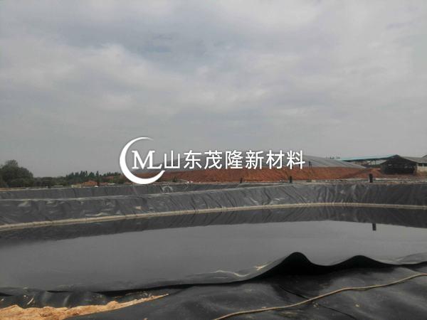 土工膜可用于污水处理也可防止水流失