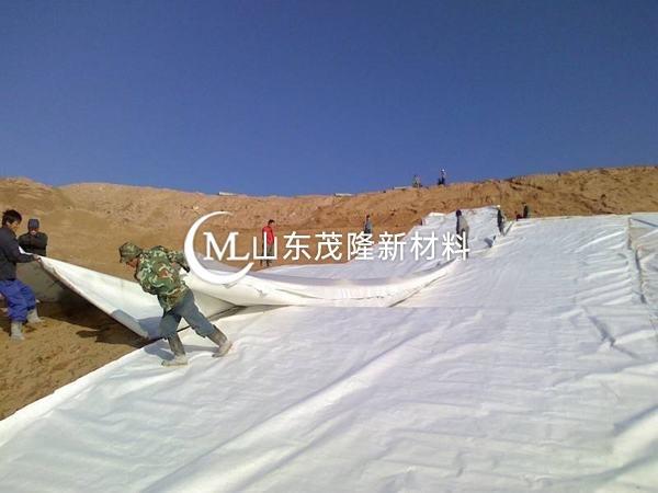 HDPE土工膜可作用于的工程