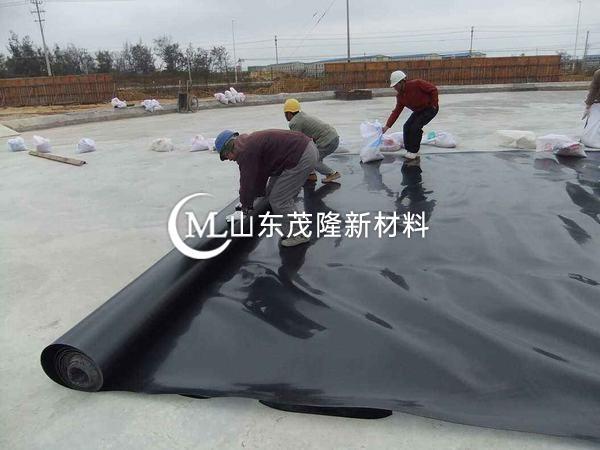 渠道衬砌土工膜作业指导书—复合土工膜焊接过程