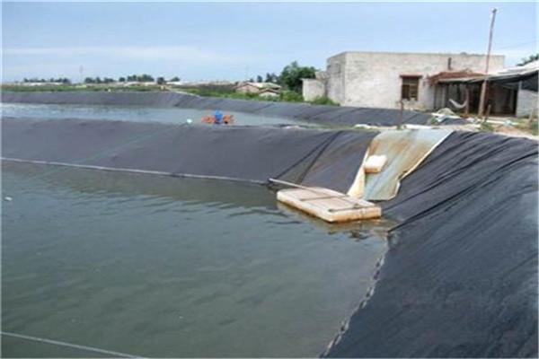 养殖防渗膜在鱼塘中应合理换水