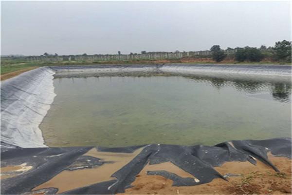 厂家介绍水池防渗膜的性能