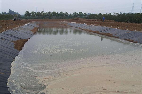 鱼塘防渗膜在养殖领域中的优势