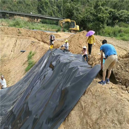 水库加固如何选择防渗土工膜