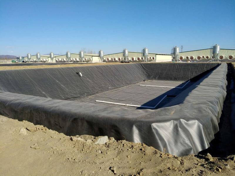 高密度聚乙烯土工膜厂家价格批发  第2张