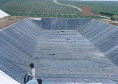 HDPE土工膜厂家介绍HDPE土工膜不被植物根系破坏的