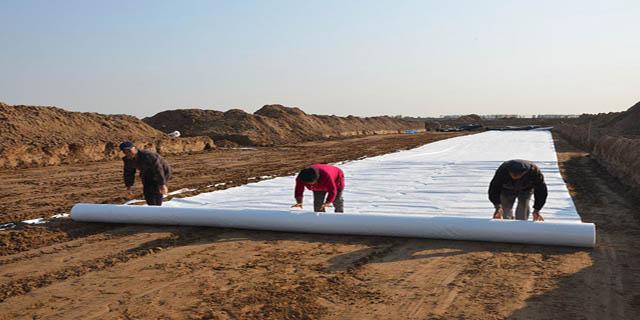 水库设计土工膜情况如何?
