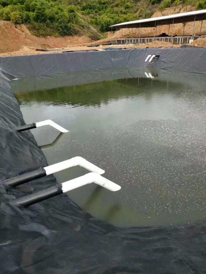 黑膜沼液池防渗漏施工技术研究HDPE膜结构及材料